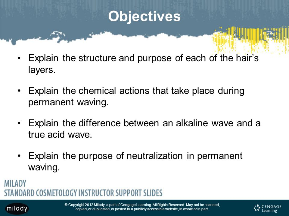 Objectives Explain the structure and purpose of each of the hair's layers. Explain the chemical actions that take place during permanent waving.
