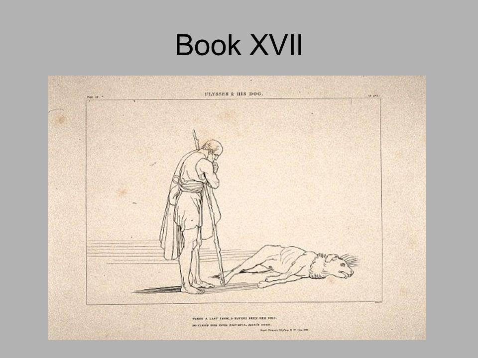 Book XVII