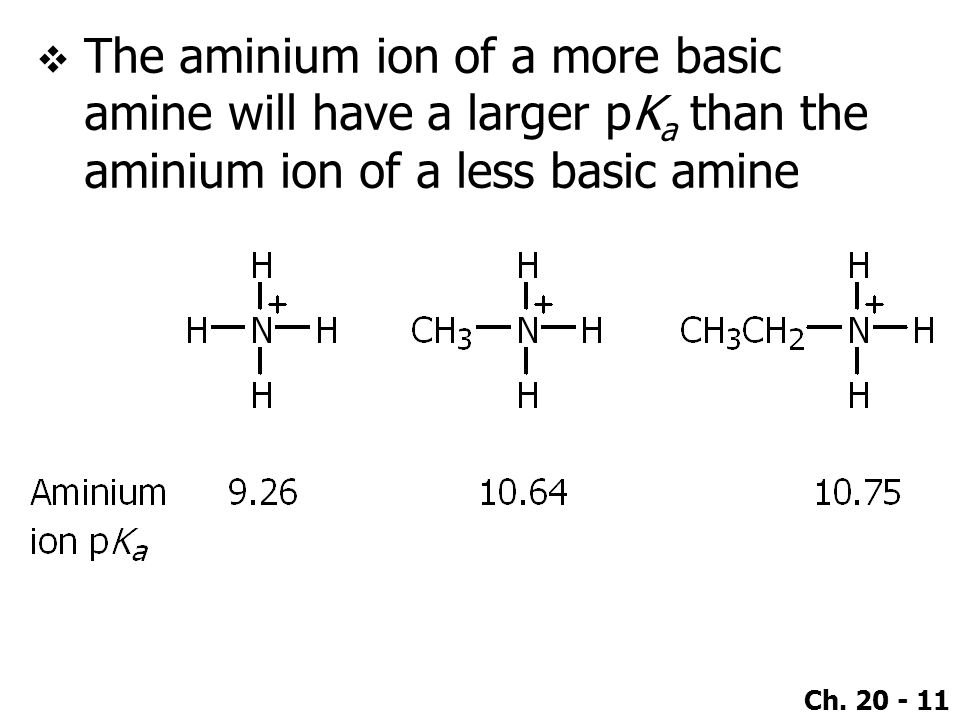 The aminium ion of a more basic amine will have a larger pKa than the aminium ion of a less basic amine
