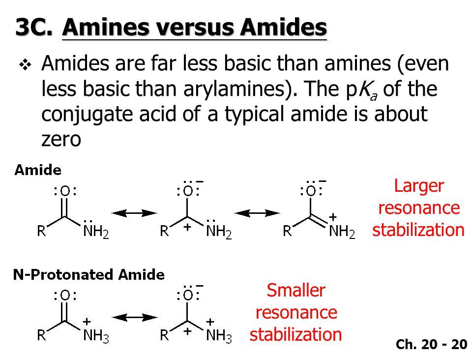 3C. Amines versus Amides