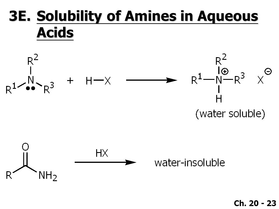 3E. Solubility of Amines in Aqueous Acids