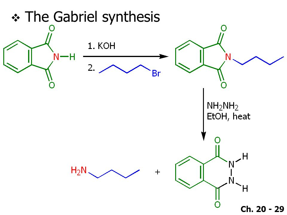 The Gabriel synthesis