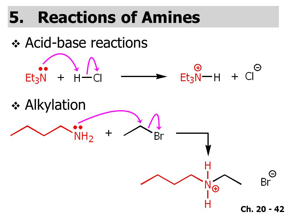 Reactions of Amines Acid-base reactions Alkylation
