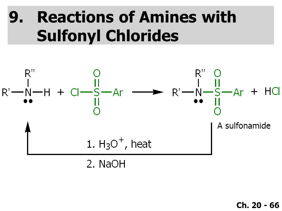 Reactions of Amines with Sulfonyl Chlorides