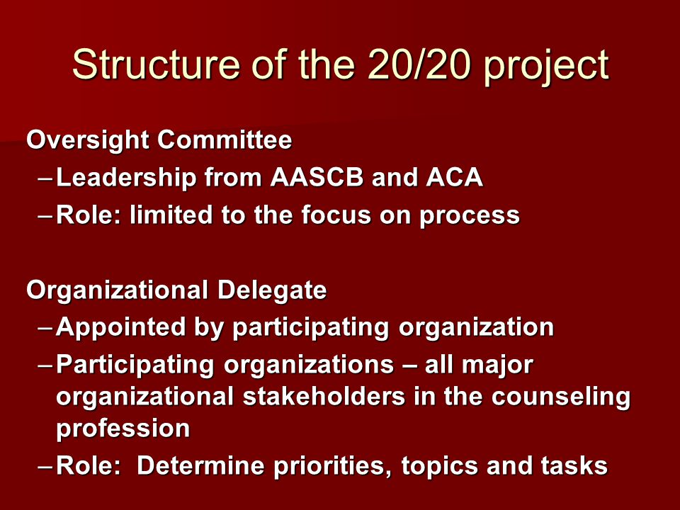 Structure of the 20/20 project