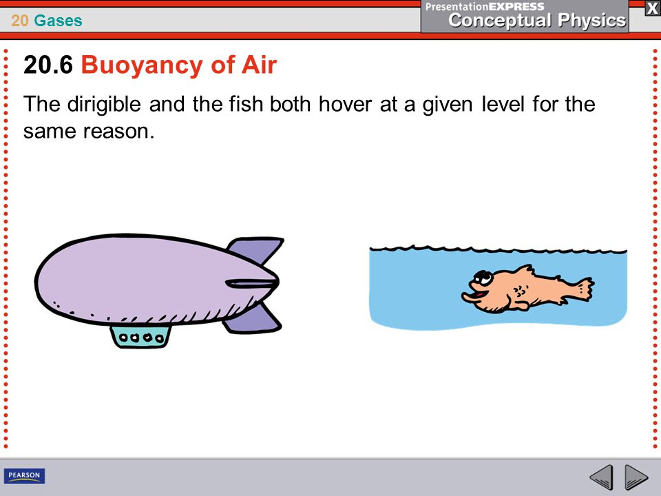 20.6 Buoyancy of Air The dirigible and the fish both hover at a given level for the same reason.