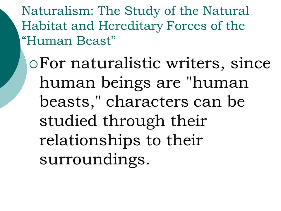Naturalism: The Study of the Natural Habitat and Hereditary Forces of the Human Beast