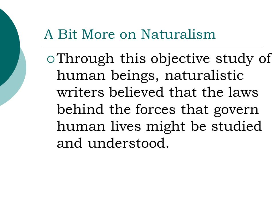 A Bit More on Naturalism