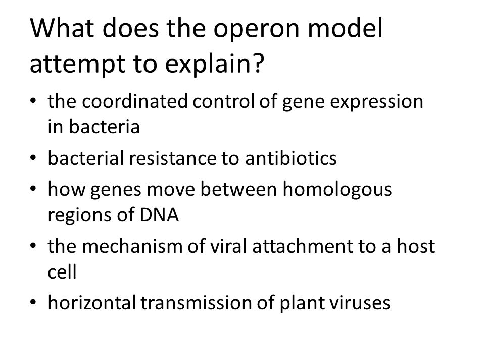 What does the operon model attempt to explain