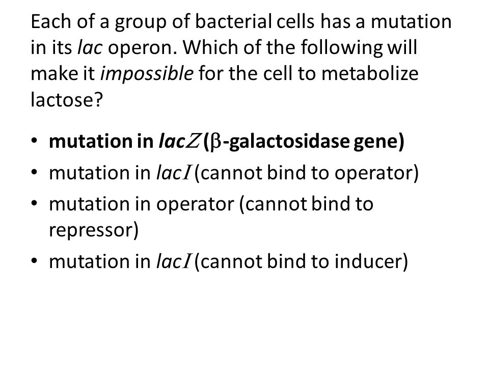 mutation in lac (-galactosidase gene)