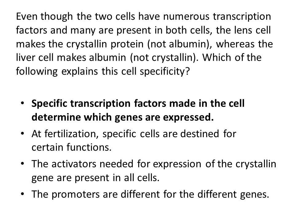 At fertilization, specific cells are destined for certain functions.