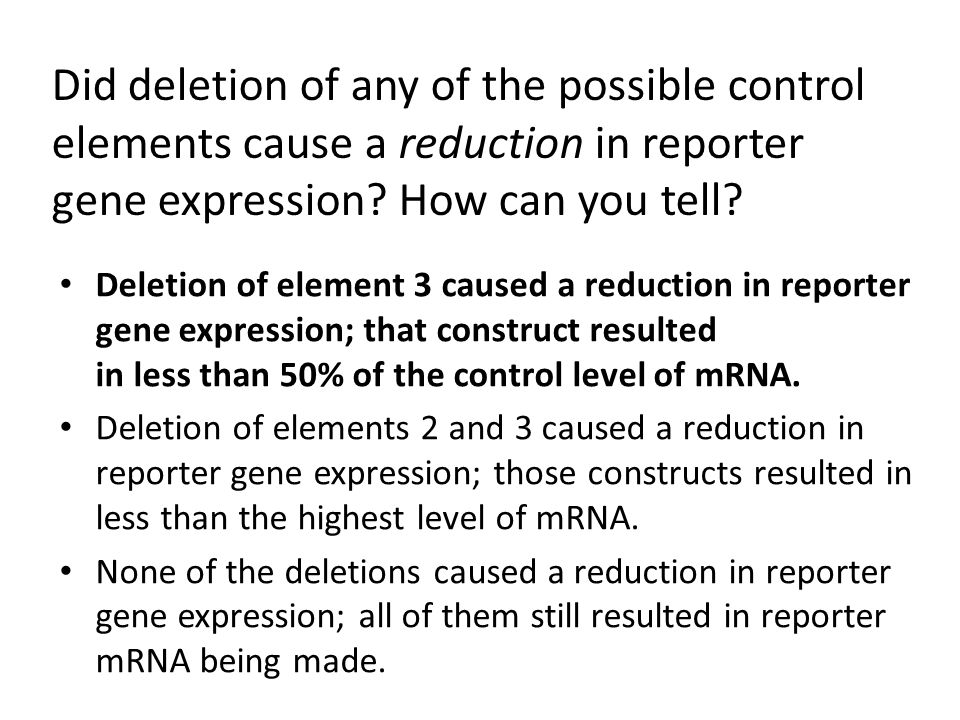 Did deletion of any of the possible control elements cause a reduction in reporter gene expression How can you tell