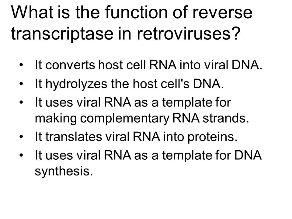 What is the function of reverse transcriptase in retroviruses