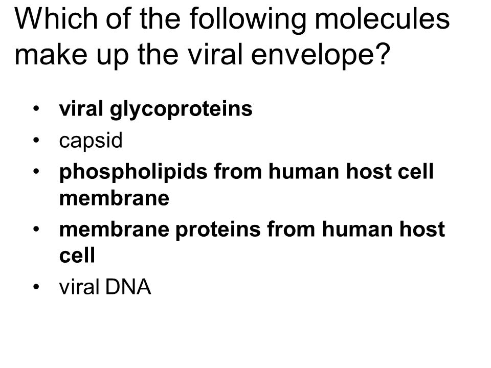 Which of the following molecules make up the viral envelope