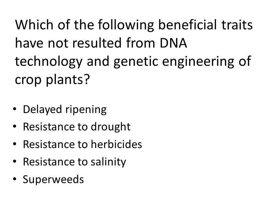 Which of the following beneficial traits have not resulted from DNA technology and genetic engineering of crop plants