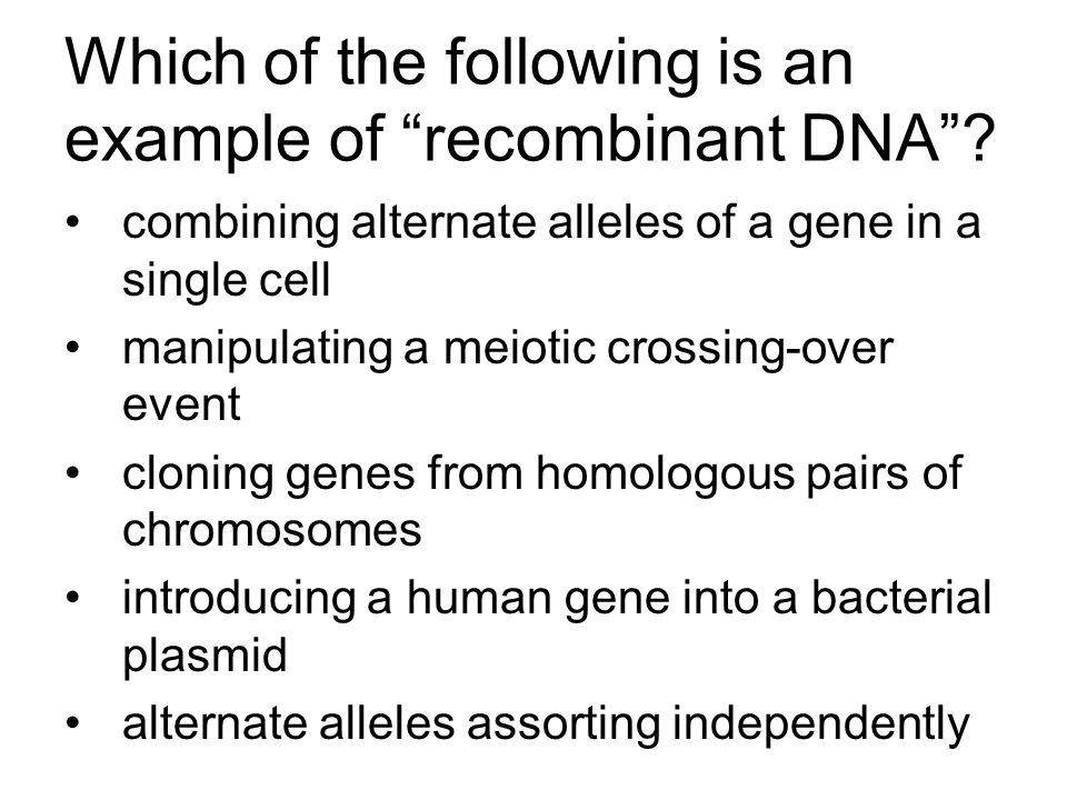 Which of the following is an example of recombinant DNA