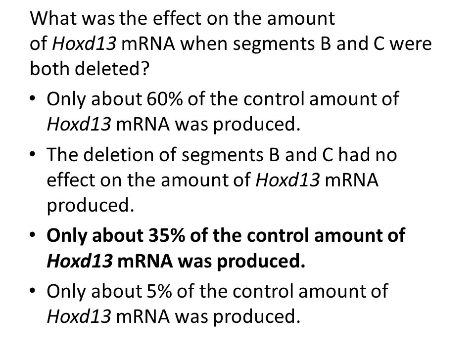 Only about 60% of the control amount of Hoxd13 mRNA was produced.