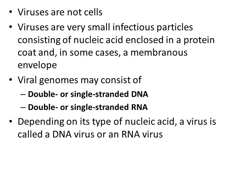 Viral genomes may consist of