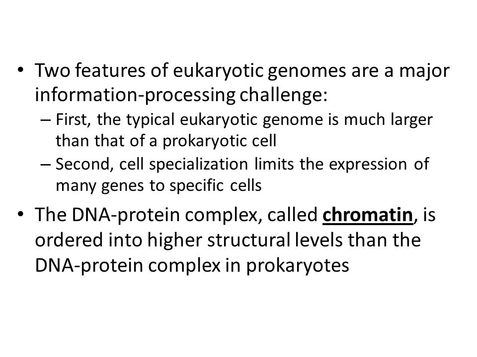 Two features of eukaryotic genomes are a major information-processing challenge: