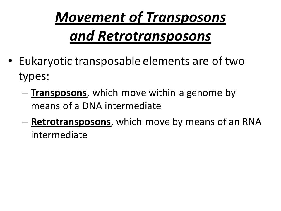 Movement of Transposons and Retrotransposons