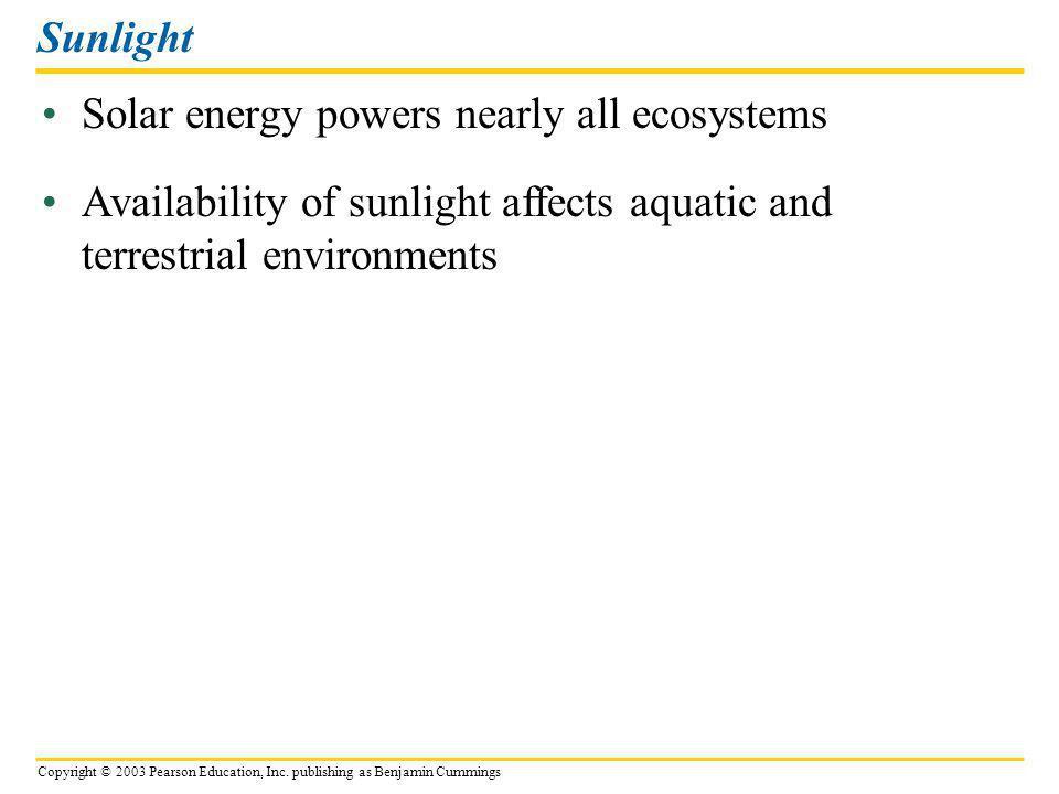 Sunlight Solar energy powers nearly all ecosystems.
