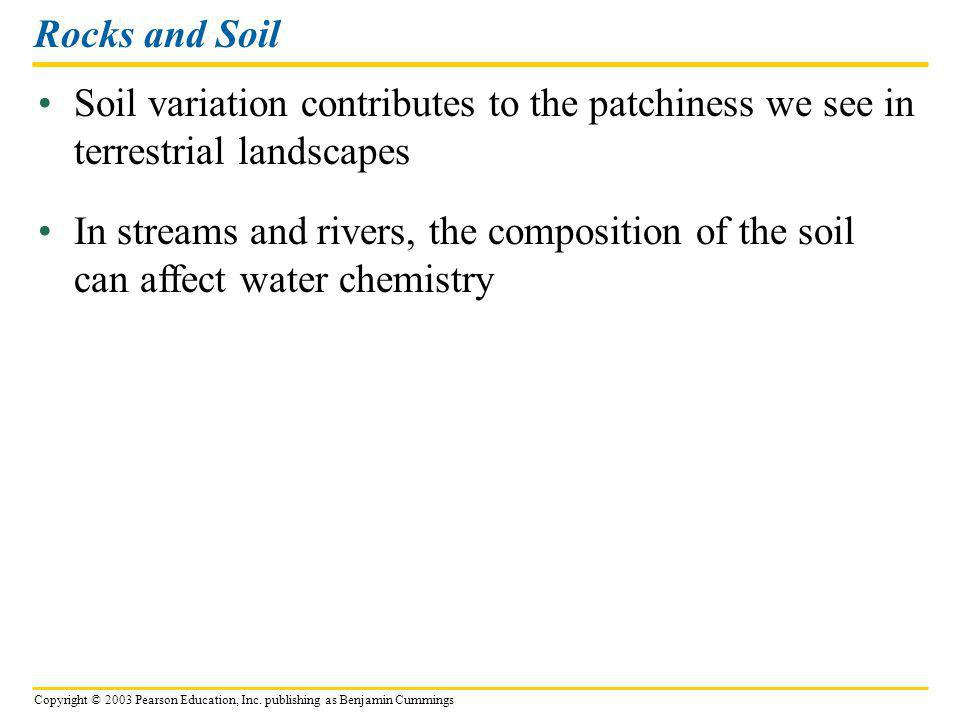 Rocks and Soil Soil variation contributes to the patchiness we see in terrestrial landscapes.