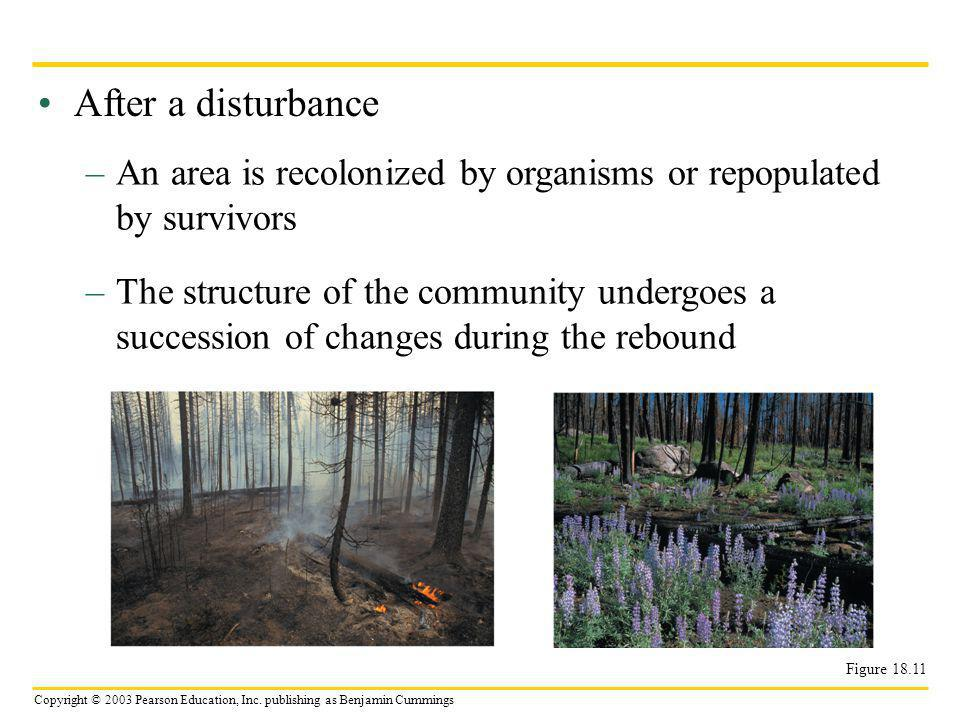 After a disturbance An area is recolonized by organisms or repopulated by survivors.
