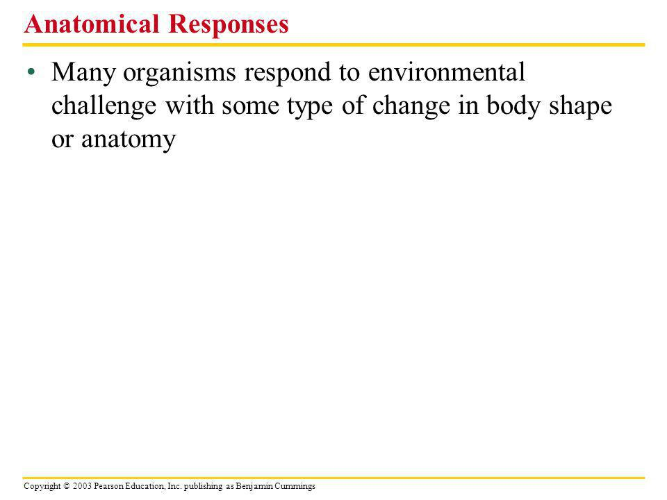 Anatomical Responses Many organisms respond to environmental challenge with some type of change in body shape or anatomy.