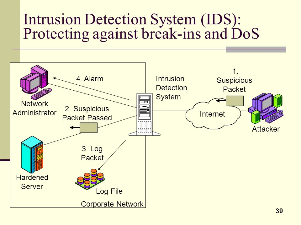 Intrusion Detection System (IDS): Protecting against break-ins and DoS