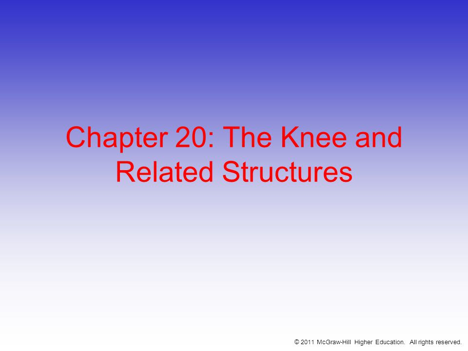 Chapter 20: The Knee and Related Structures