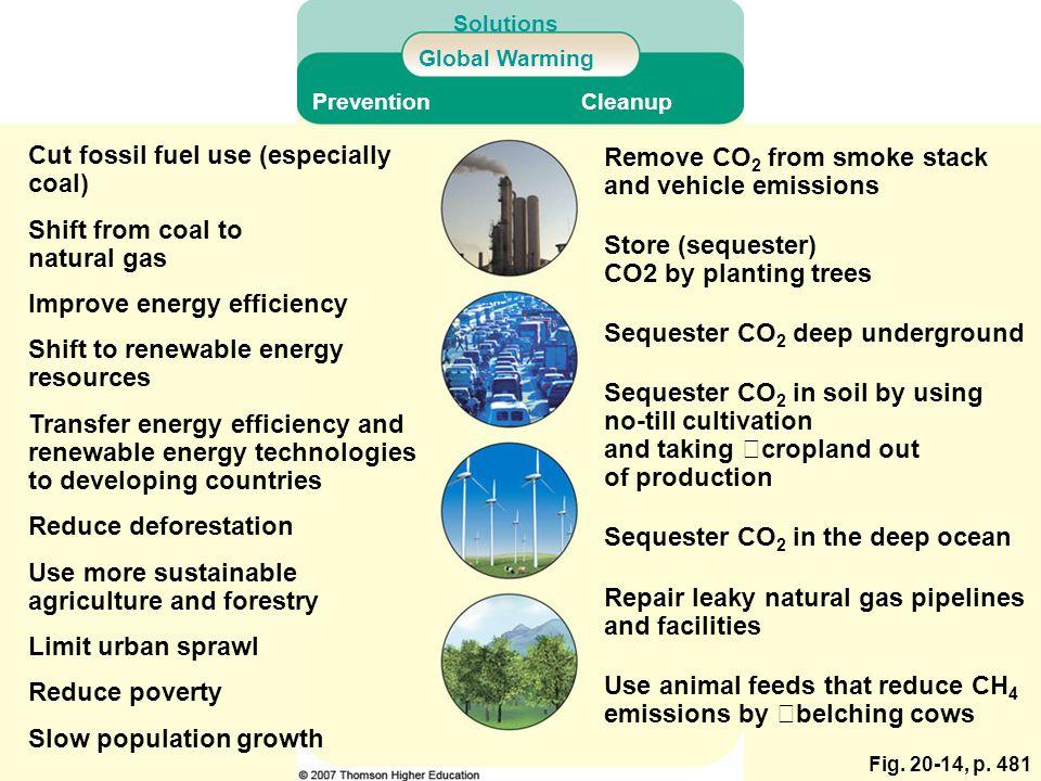 Cut fossil fuel use (especially coal)