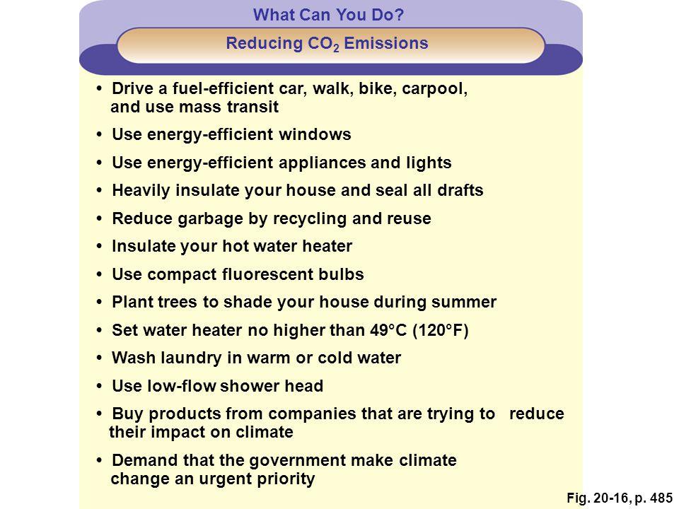 • Drive a fuel-efficient car, walk, bike, carpool,
