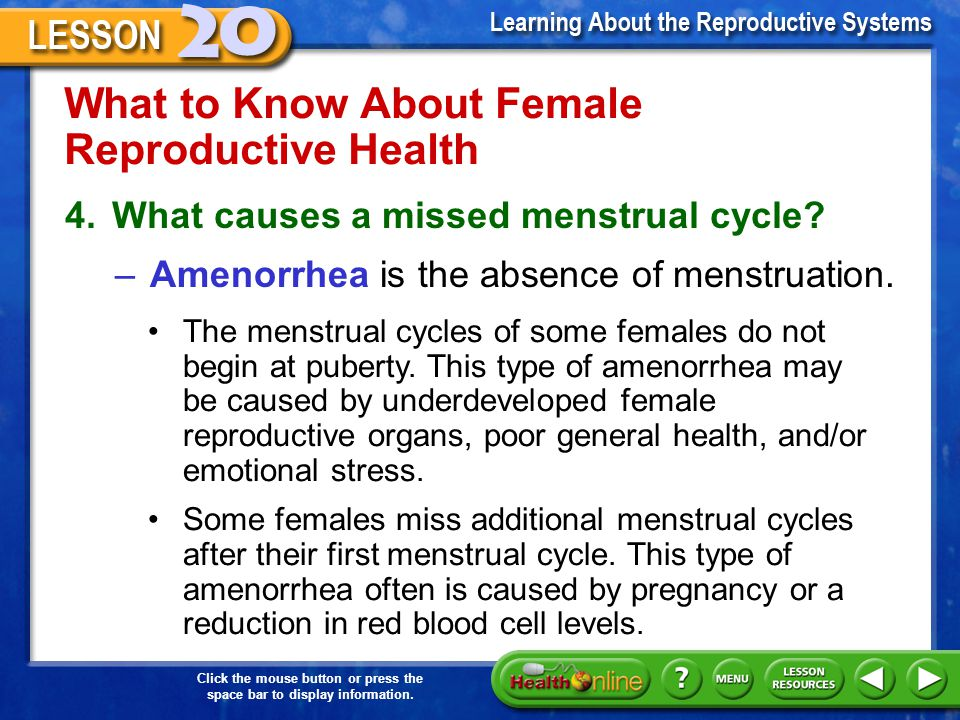 What to Know About Female Reproductive Health