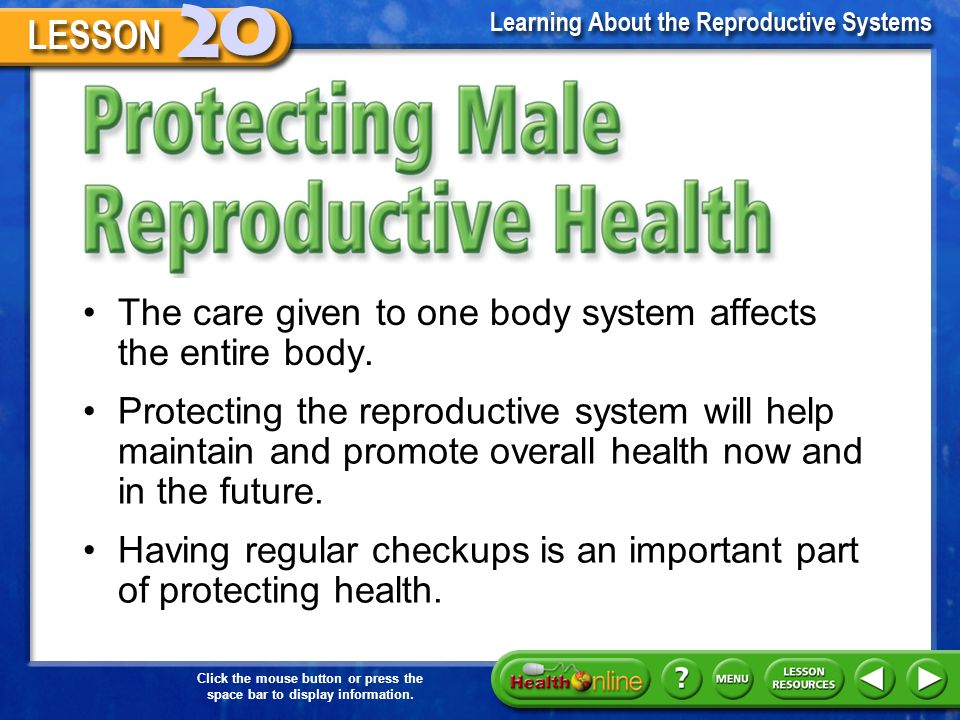 Protecting Male Reproductive Health