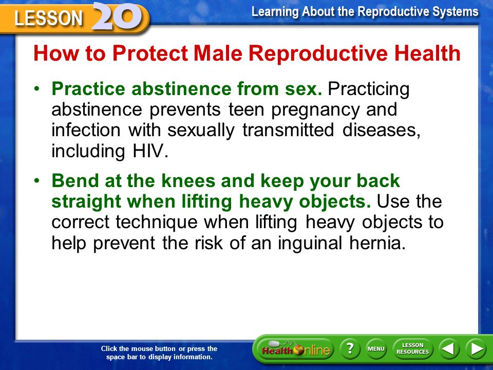 How to Protect Male Reproductive Health