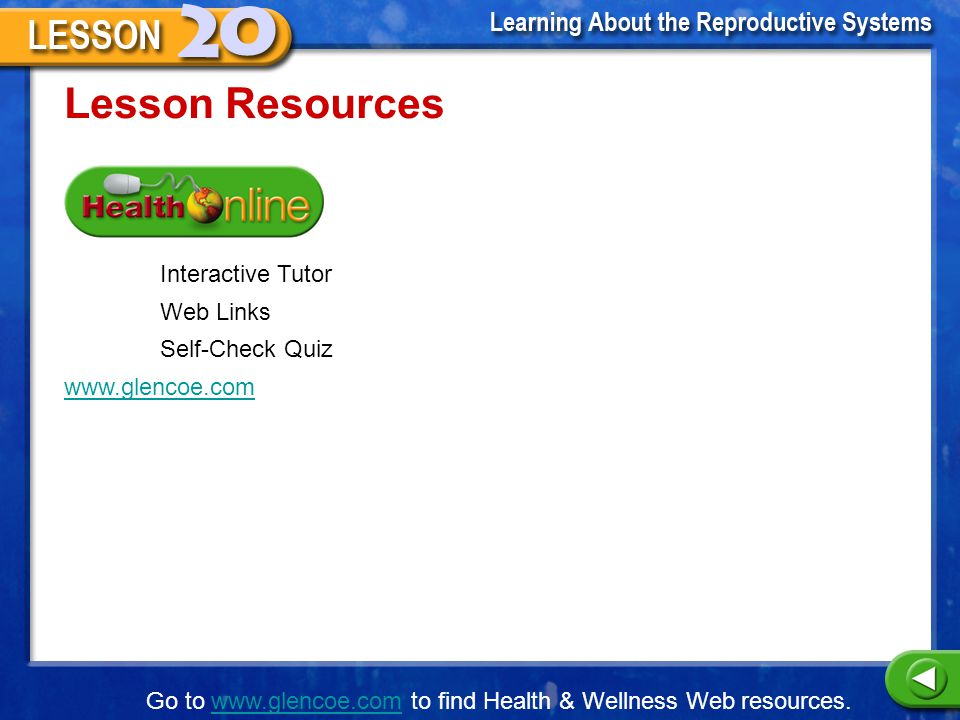 Lesson Resources Interactive Tutor Web Links Self-Check Quiz