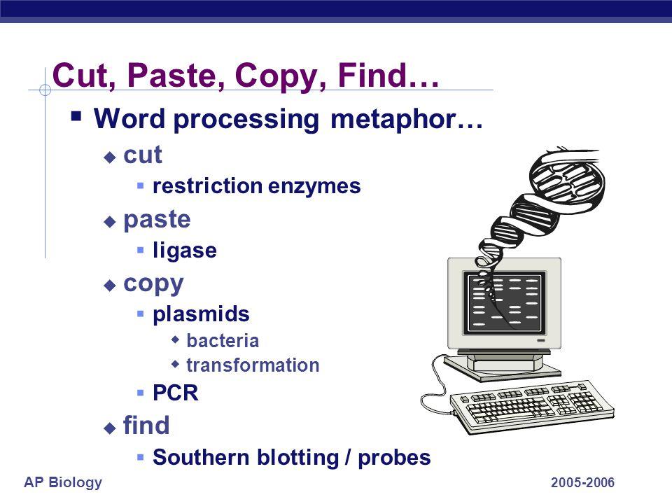Cut, Paste, Copy, Find… Word processing metaphor… cut paste copy find