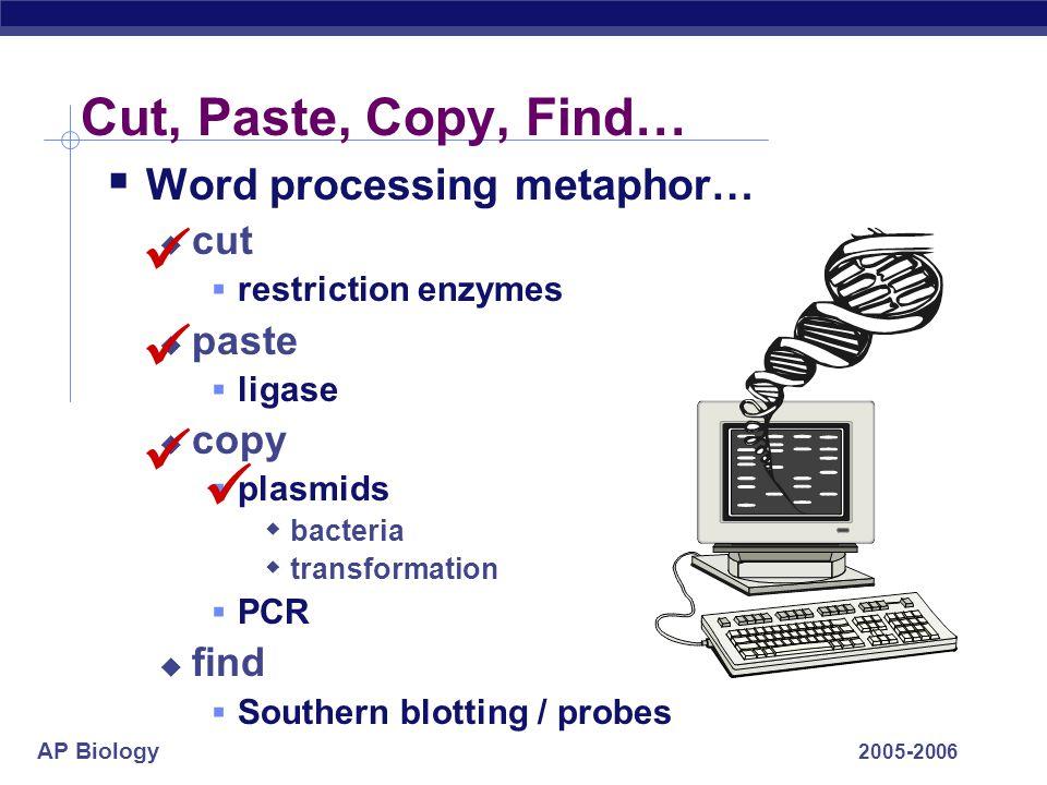     Cut, Paste, Copy, Find… Word processing metaphor… cut paste