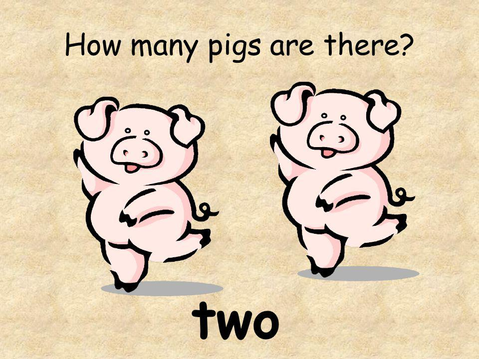 How many pigs are there two