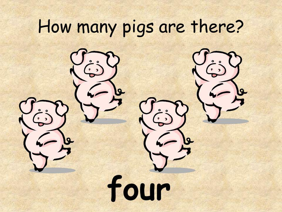 How many pigs are there four