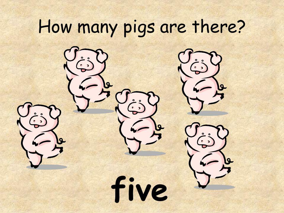How many pigs are there five