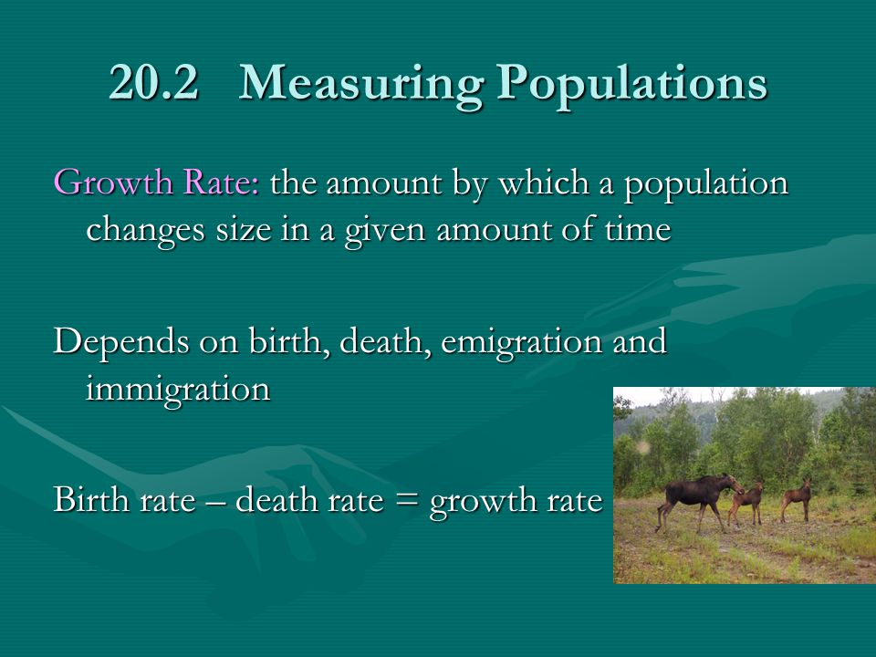 20.2 Measuring Populations