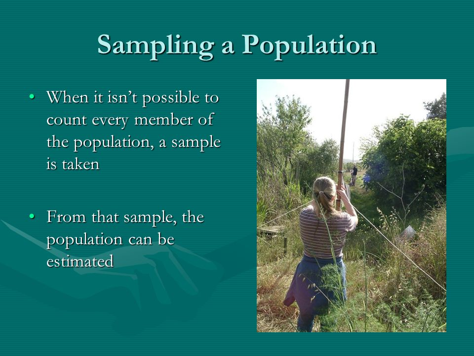 Sampling a Population When it isn't possible to count every member of the population, a sample is taken.