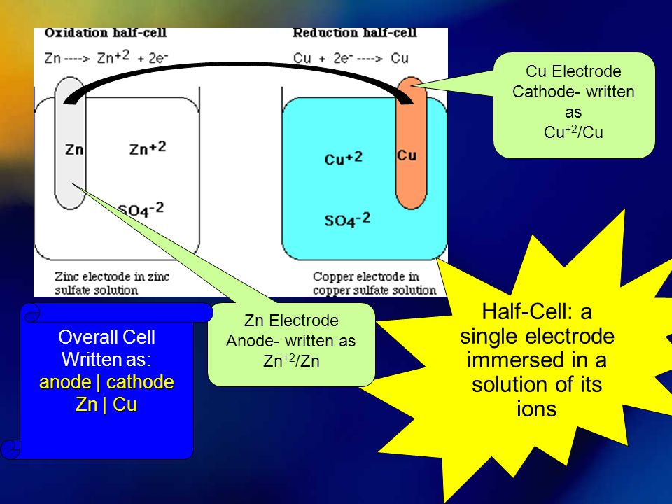 Half-Cell: a single electrode immersed in a solution of its ions