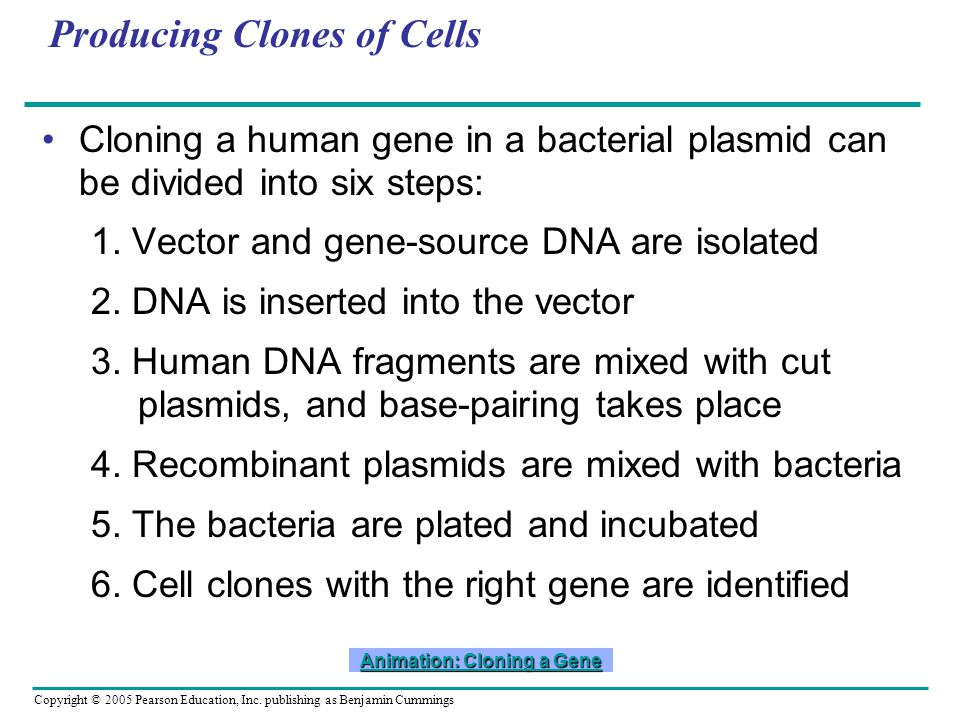 Producing Clones of Cells