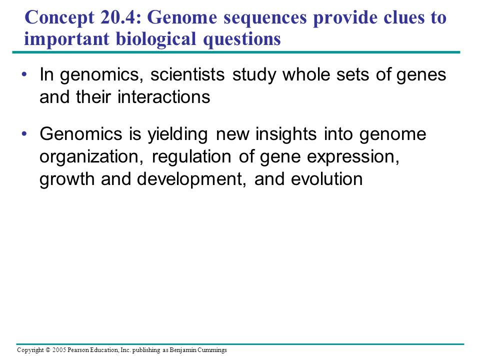 Concept 20.4: Genome sequences provide clues to important biological questions