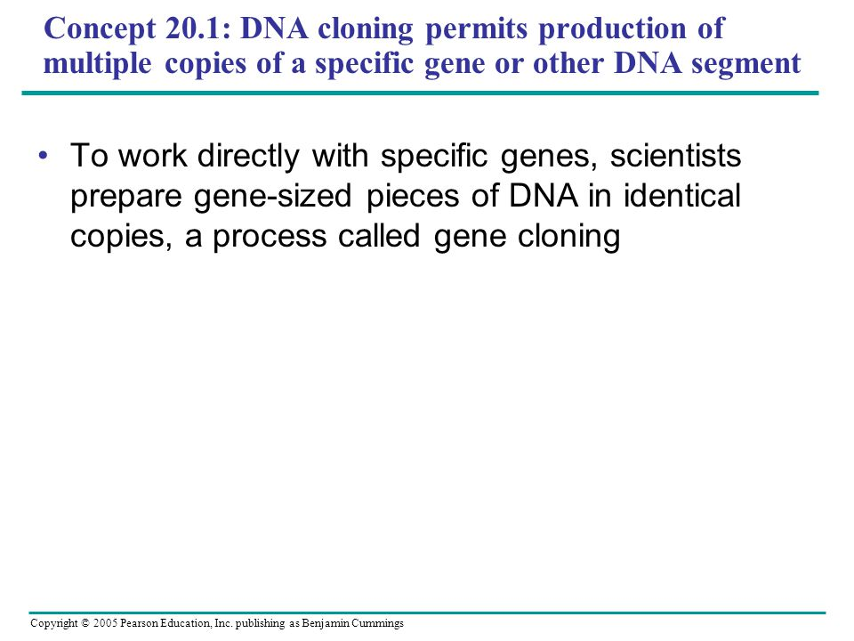 Concept 20.1: DNA cloning permits production of multiple copies of a specific gene or other DNA segment