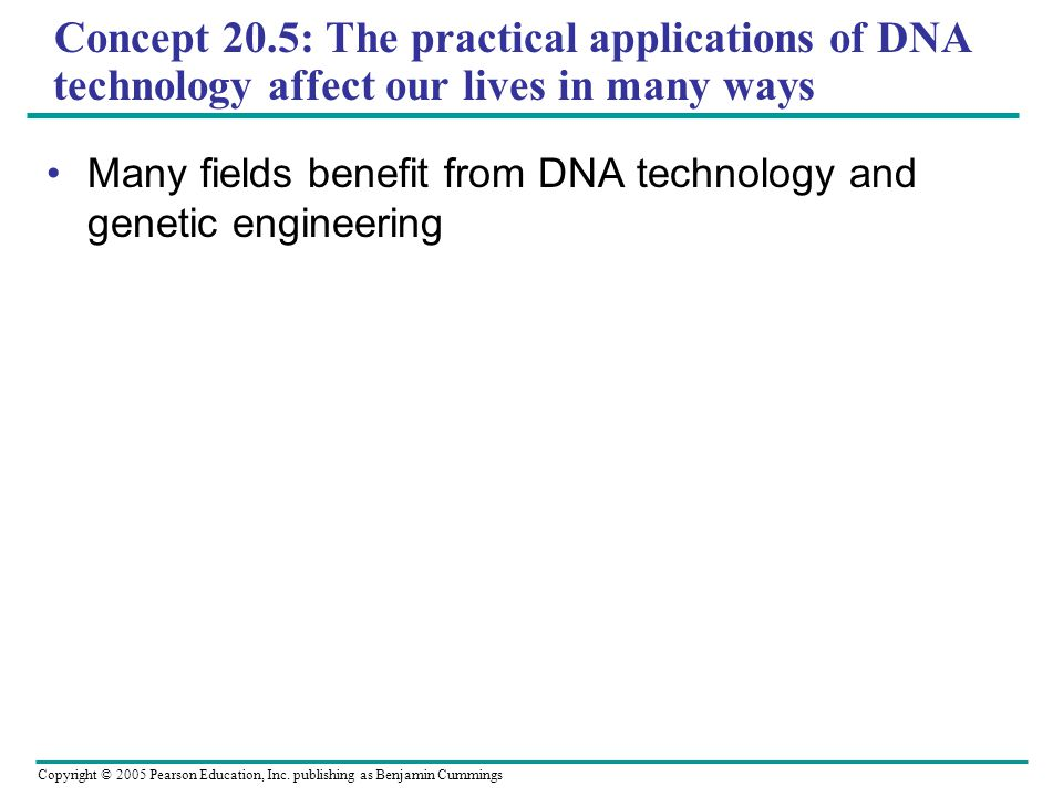 Concept 20.5: The practical applications of DNA technology affect our lives in many ways