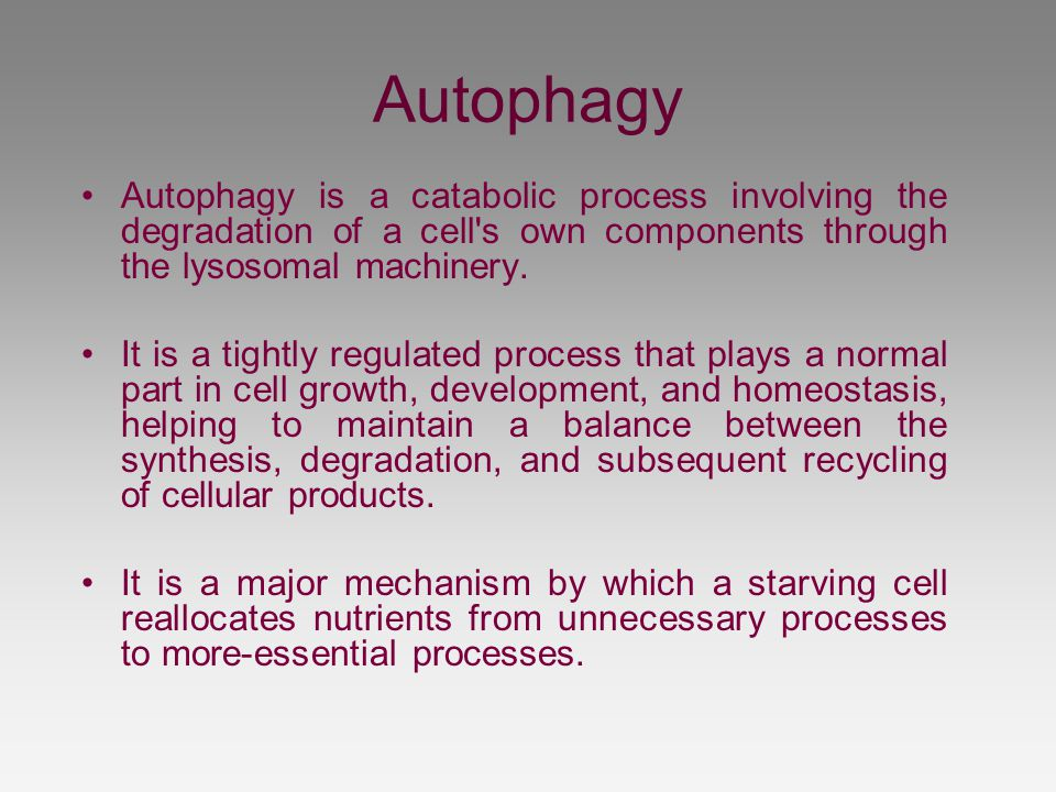 Autophagy Autophagy is a catabolic process involving the degradation of a cell s own components through the lysosomal machinery.