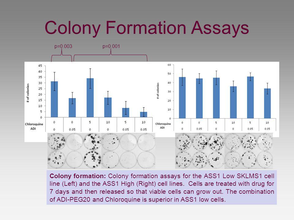 Colony Formation Assays